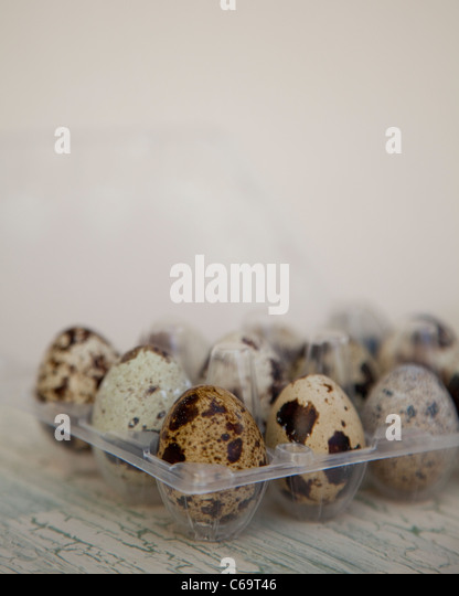 Quails eggs in an egg box - Stock Image