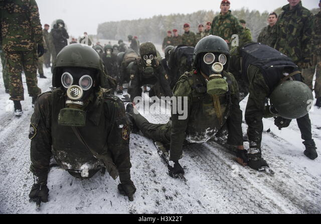 Novosibirsk Region, Russia. 12th Oct, 2016. Special task force and reconnaissance units members of the Russian Federal - Stock Image