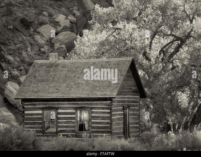 Fruita Schoolhouse. and cottonwood trees. Capitol Reef National Park, Utah - Stock Image