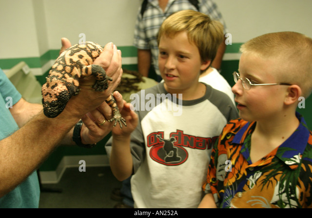 Albuquerque New Mexico State Fair Natural Resources exhibit endangered species Gila Monster W - Stock Image