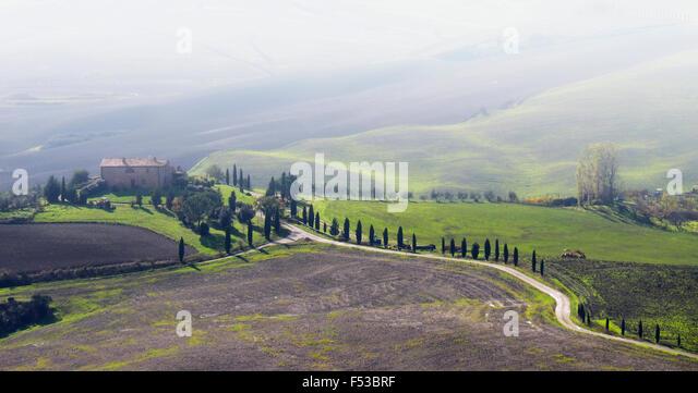 Europe, Italy, Tuscany. Winding road leading to a villa near the hilltown of Pienza. - Stock-Bilder