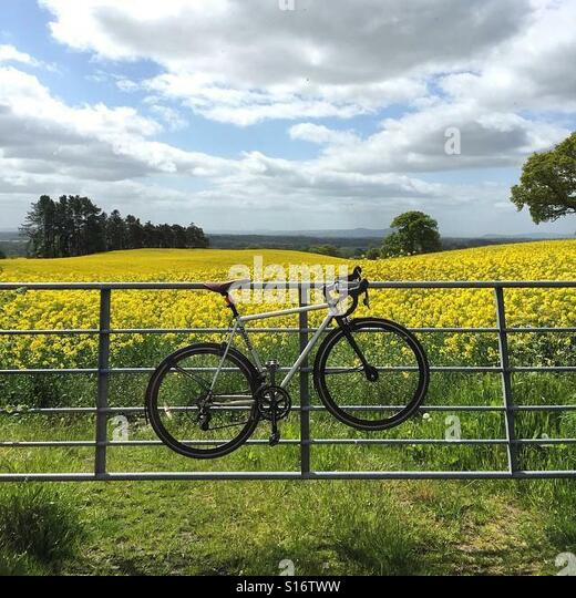 Bike locked to fence - Stock-Bilder