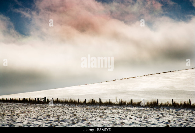 A minimalist snowy winter landscape on the Wiltshire Downs England UK - Stock Image