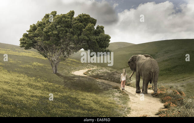 Girl (4-5) and small elephant walking along winding foot trail - Stock Image