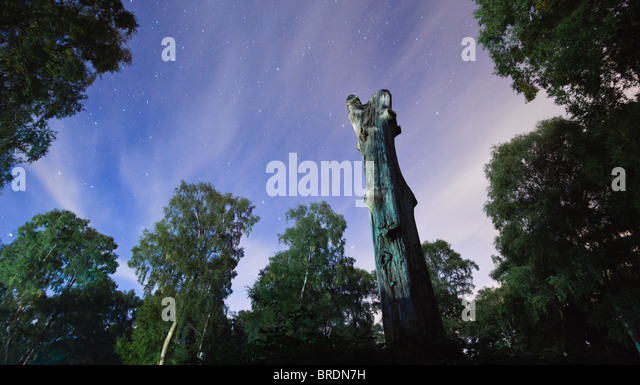 Looking North at the night sky and stars, New Forest, Hampshire, UK - Stock Image