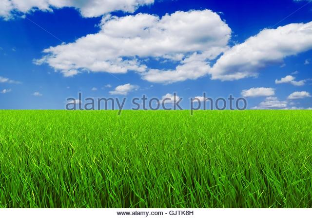 meadow firmament sky - Stock Image