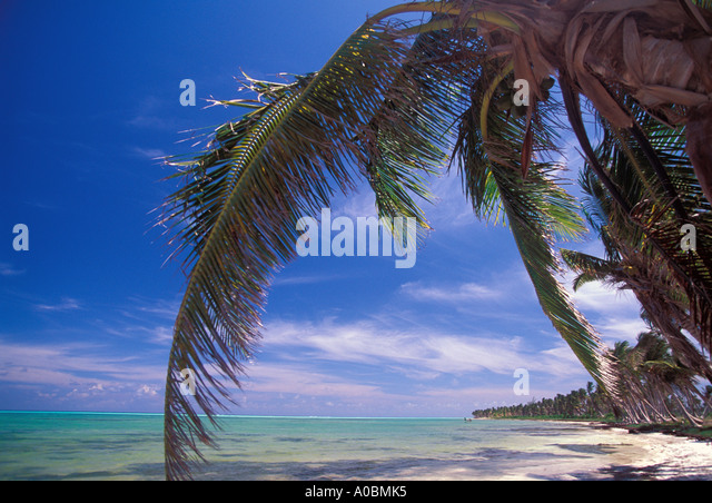 Tropics tropical beach deserted - Stock Image
