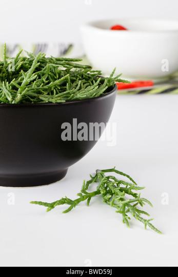 Fresh Samphire - Stock Image