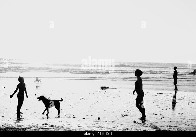 Dog beach , near San Diego, California - Stock Image