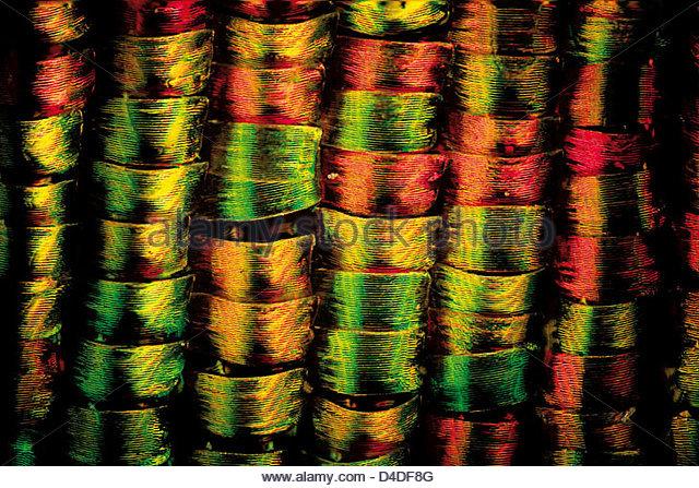 macro shot of an urania butterfly (Chrysiridia madagascarensis) x240 (Colour Enhanced) - Stock Image