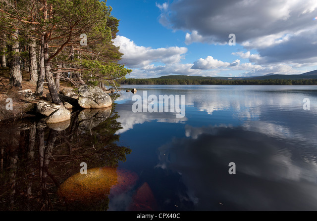 Loch Garten, Strathspey, Cairngorms National Park, Scotland - Stock Image