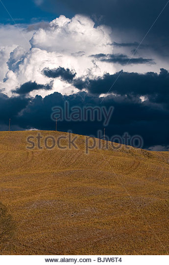 A distant thunder cloud (cumulus) dominates the countryside of Tuscany, Italy - Stock Image