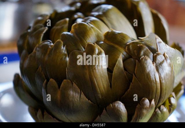 Boiled artichoke - Stock Image