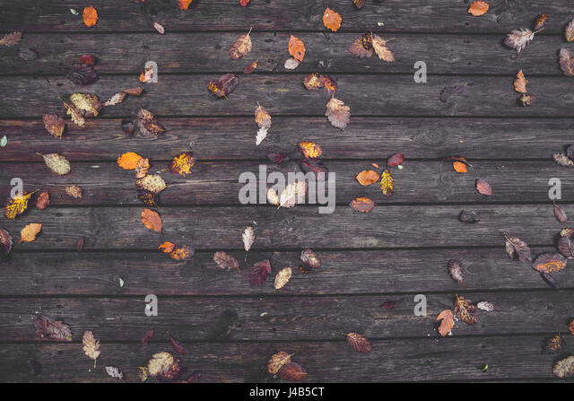 Autumn leaves on a wooden background with dark planks in the autumn season with colorful autumn leaves i various - Stock Image