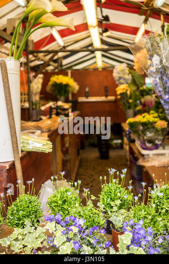 Flowers sales in the market in the University city of Cambridge in England - Stock-Bilder