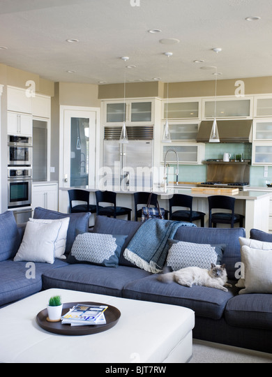 USA, Utah, Provo, Cat relaxing on sofa in luxury home - Stock Image