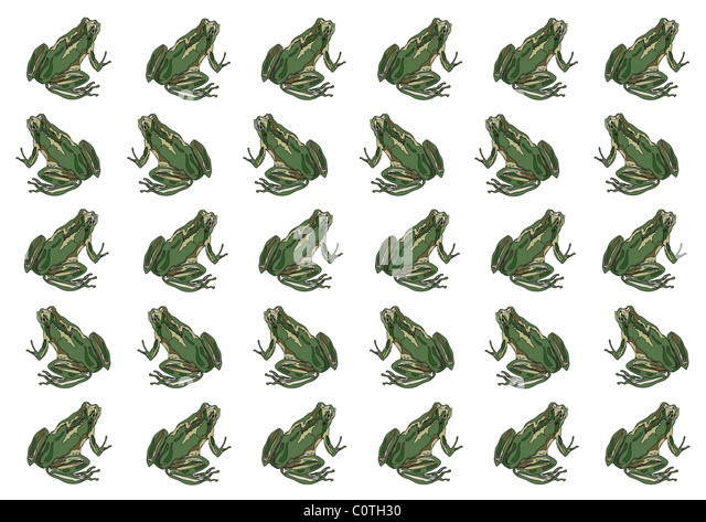 Pattern of Japanese Painting, Japanese Tree Frog - Stock Image