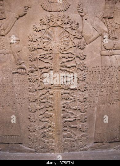 the assyrian sacred tree essay