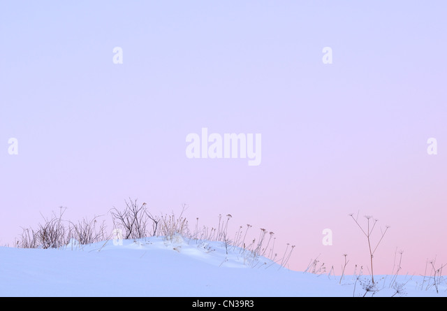 Snow covered land, Dzembronyna village area in the Carpathian Mountains, Ukraine - Stock Image