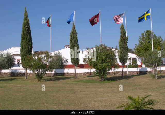 flags herdade do esporao alentejo portugal - Stock Image