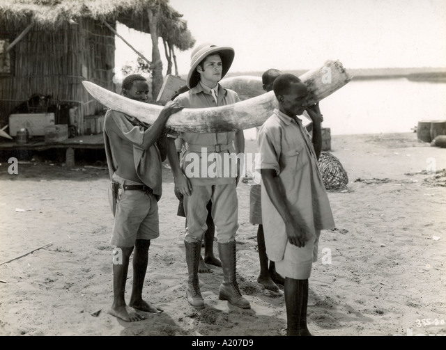 An average size trunk Film still from the Trader Horn directed by W S Van Dyke - Stock-Bilder