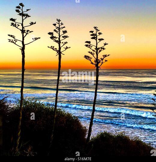 Ocean Breeze - Stock-Bilder