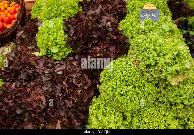 Traditional French market stall with lettuce on display, Issigeac, France - Stock Image
