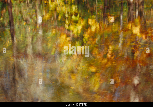 A morning impressionistic reflection of autumn foliage along Tremont Creek in Great Smoky Mountains National Park. - Stock Image