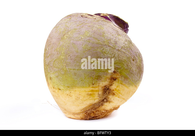 Swede or turnip isolated against white background. - Stock Image