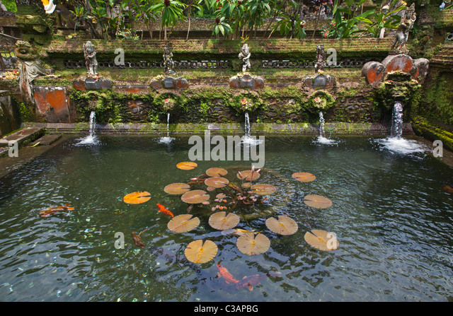 Garden hindu temple stock photos garden hindu temple for Koi pond india