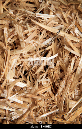 Needle in straw or hay stack - Stock Image
