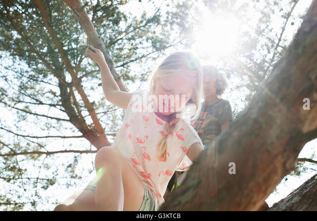 Boy and girl climbing tree - Stock Image