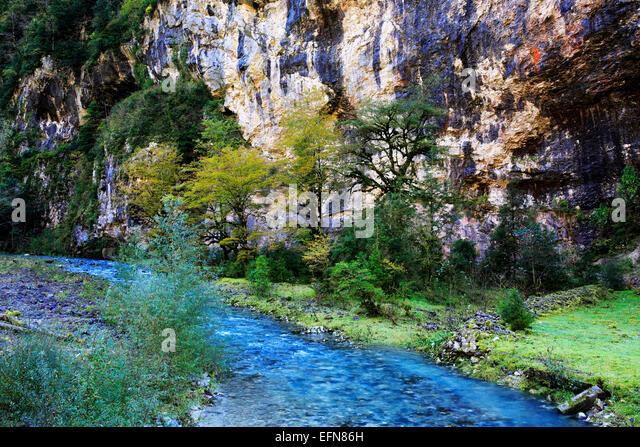 River in Caucasus mountains, Abkhazia, Georgia - Stock Image