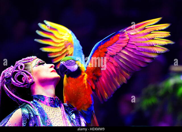 Minsk, Belarus. 23rd Dec, 2016. A performer with a macaw in the Taina Volshebnogo Lartsa show at the Belarus State - Stock Image
