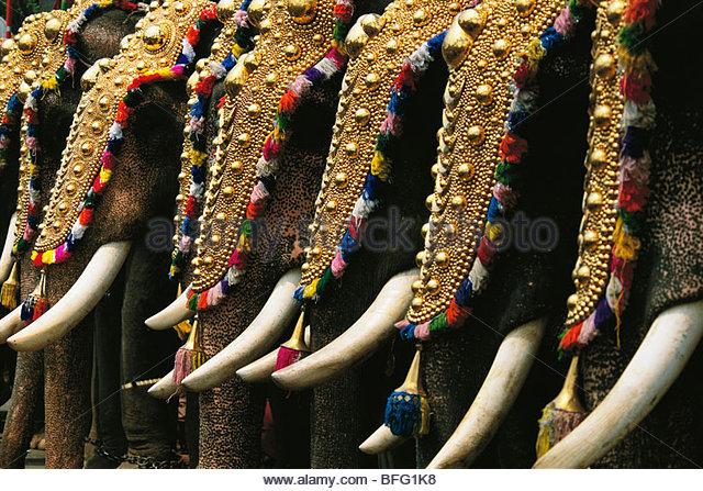 Puram elephant festival, Trissur, Kerala, India - Stock-Bilder