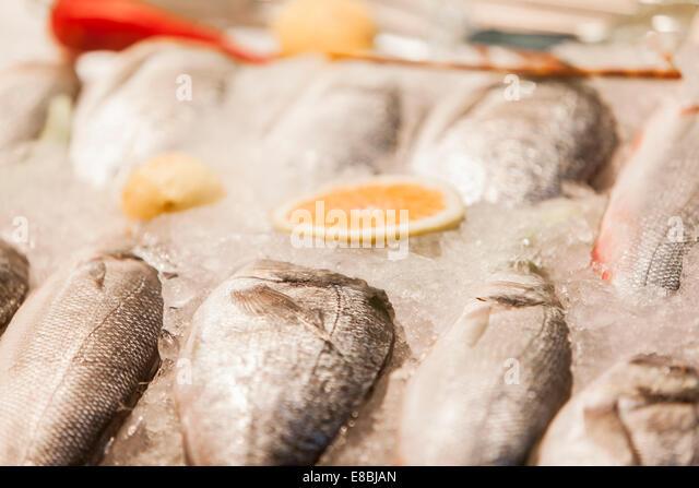 Fresh seafood - Stock Image