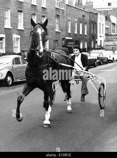 1973 oil crisis - Alternate ways of transport - a man in a racing sulky drawn by a horse - Stock Image