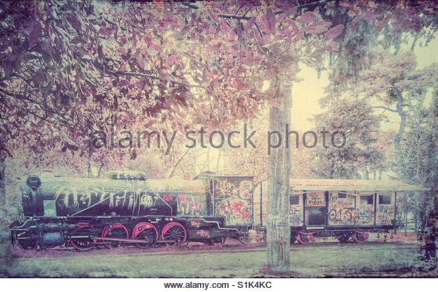 old Train in a park' - Stock Image