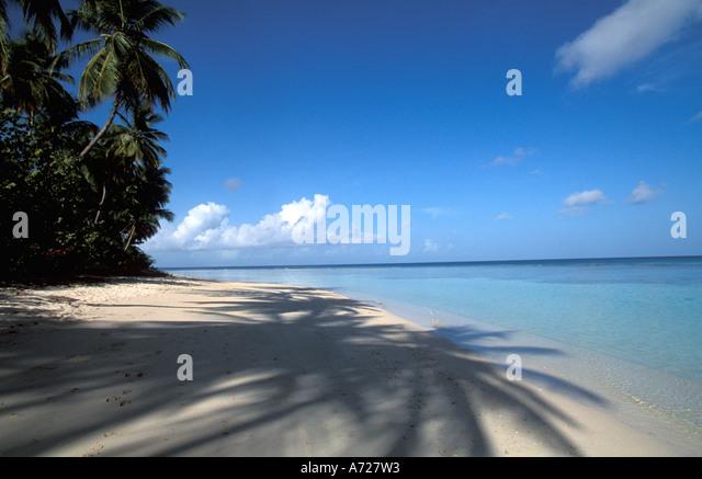Tropics tropical beach beaches - Stock Image