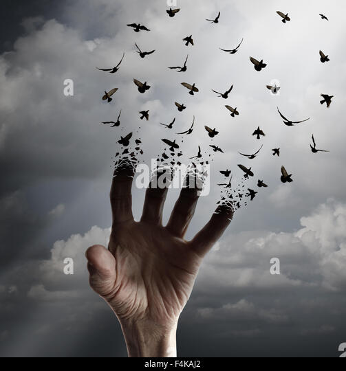 Life transformation concept as a hand reaching out tranforming into flying birds following sunlight as a freedom - Stock-Bilder