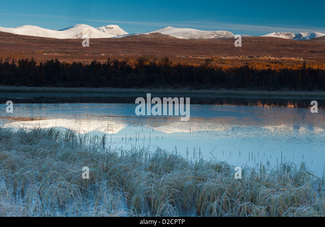 Frosty September morning at Fokstumyra nature reserve, Dovre, Norway. - Stock-Bilder