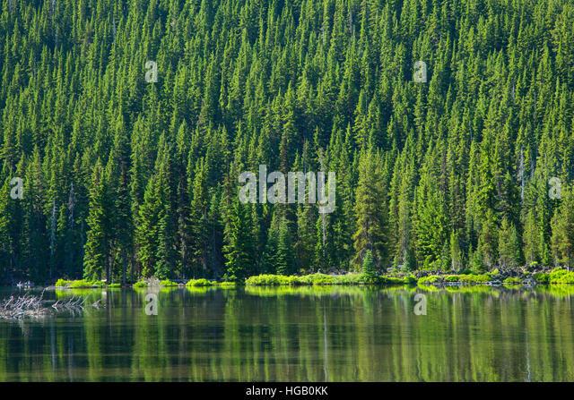 picture photo devils lake deschutes - photo #13
