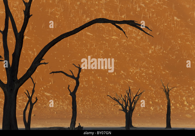 Dead trees in dry clay pan, Dead Vlei, Soussusvlei, Namibia, Africa - Stock Image