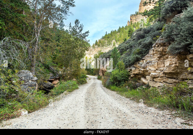Road through Crazy Woman Canyon near Buffalo, Wyoming - Stock Image
