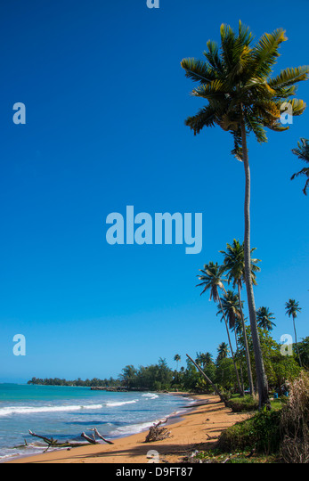Luquillo Beach, Puerto Rico, West Indies, Caribbean - Stock Image
