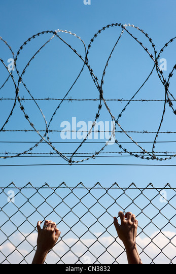 Person's hands on wire fence - Stock Image
