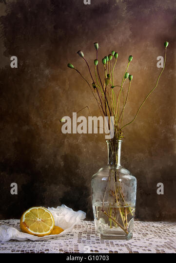 Still Life with Lemon and withered poppies in vase - Stock Image