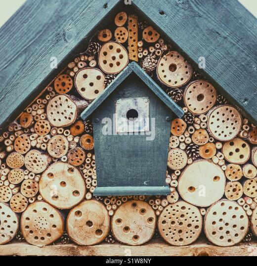 Bird box and bug hotel in garden - Stock Image