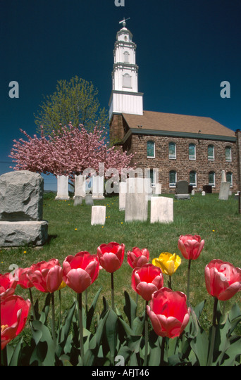 New Jersey Fairfield Dutch Reformed Church tulips gravestones springtime - Stock Image
