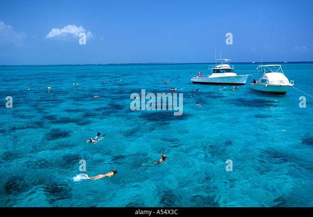 Grand Cayman Island West Indies Caribbean Snorkeling in North Sound - Stock Image